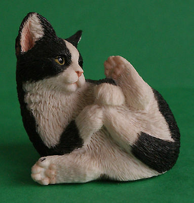 Sherratt And Simpson England Black And White Cat Playing - 347B/w Kitten Curl