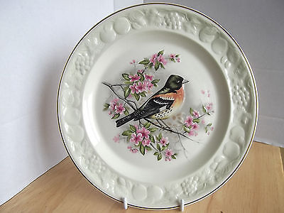 Royal Worcester Palissy BRAMBLING BIRD  Embossed  Relief Collectors Plate