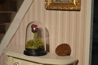 Dolls house miniature Beauty and the Beast rose in a plastic dome