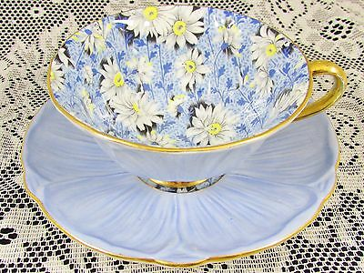 Shelley Rare Blue Marguerite Daisy Chintz Oleander Tea Cup And Saucer