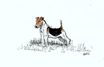 A4 print of sketch Fox Terrier standing proud. dog art painting