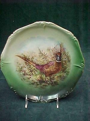 Late Victorian Porcelain Game Plate Ring Necked Pheasant Rooster Ringneck 9.5""