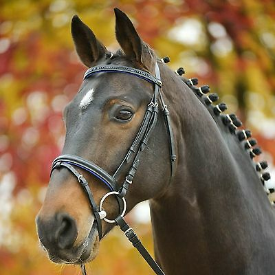Black/Blue Dressage/Event bridle horse size with crystal brow band