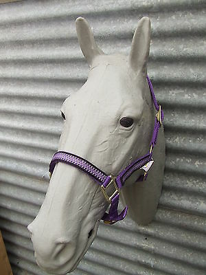 Ecotak purple halter/headstall with houndstooth pattern pony