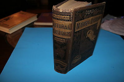 Popular Natural History  by  Rev. J.G. Wook, M.A.   1865