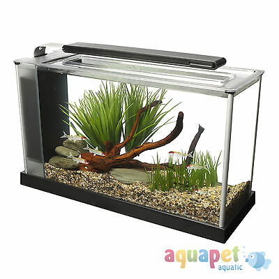 Fluval Spec 19L Desktop Glass Aquarium – White