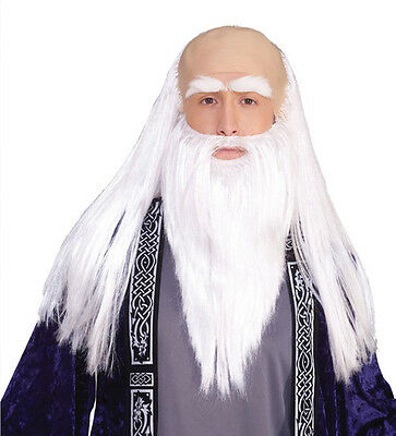 Wizard Wig & Beard Adult Costume Set