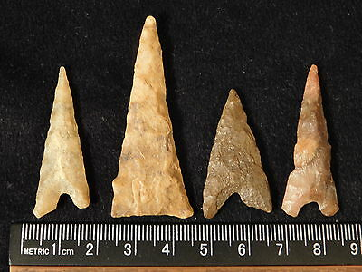 A Lot of Larger Ancient North African Arrowheads or Points! 22.64