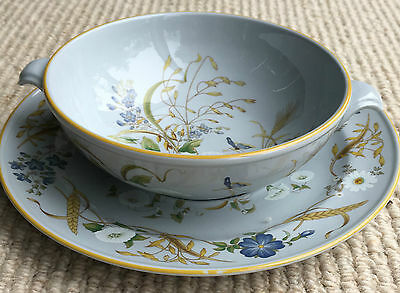 Spode Summer Harvest Soup Bowl And Stand.