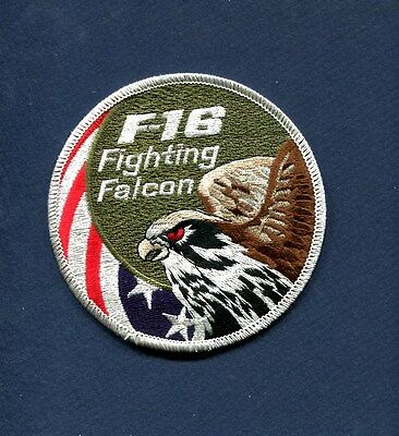 Subdued GENERAL DYNAMICS F-16 FIGHTING FALCON SWIRL USAF ANG Squadron Patch