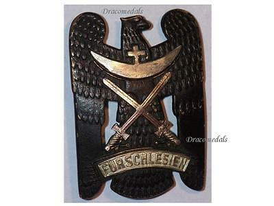 GErmany Silesian Eagle Swords Badge Military Medal Freikorps 1919 German Weimar