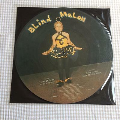 "Blind Melon - Tones of Home  12"" VINYL PIC PICTURE DISC"