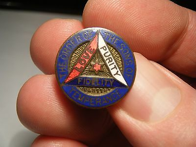 Vintage The Order Of The Sons Temperance Love Purity Fidelity Lapel Enamel Badge