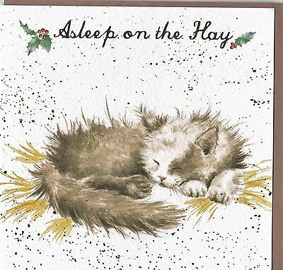 "Country Set Christmas Greeting Card Wrendale Designs  ""Asleep on the Hay"" CAT"
