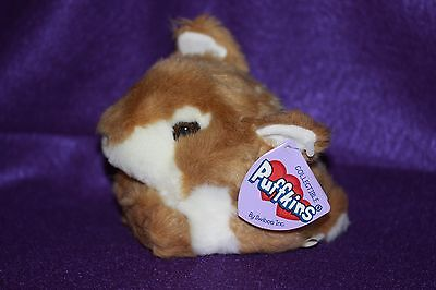 """Puffkins By Swibco Plush 5"""" tall SWIFTY Baby Deer Fawn RARE DOB 9-9-1999"""