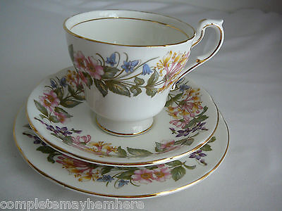 Paragon Country Lane trio cup saucer plate high tea, cuppa, parties, wedding