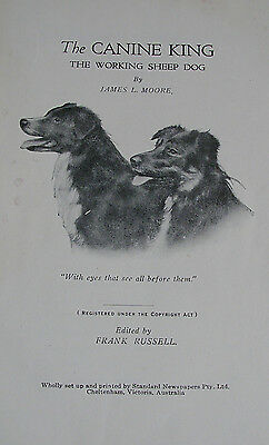 THe Canine King The Working Sheepdog by James L Moore 1st 1929 - Very Rare Book