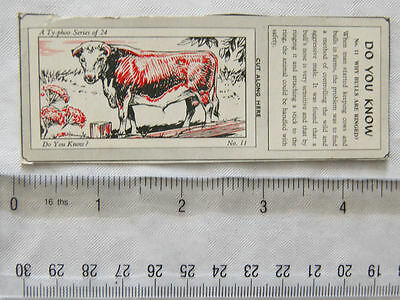 1962 Typhoo Do you Know card No. 11 Why Bulls are Ringed?