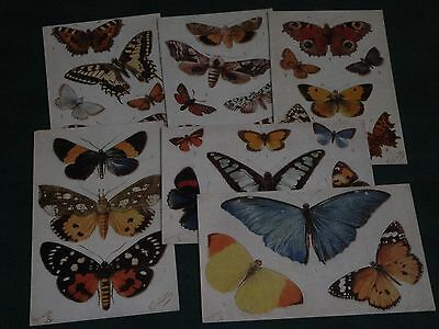 SET OF SIX TUCK NOVELTY PUSH-OUT POSTCARDS -  BUTTERFLIES ON THE WING - No. 3390