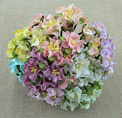 Mulberry Paper Flowers 10 x 25mm Miniature GARDENIAS Pack of Mixed Pastel Shades