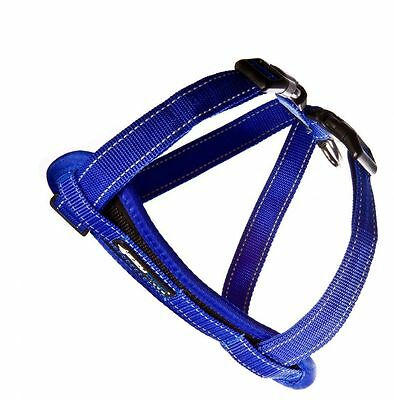 EzyDog Harness WITH Removable Safety Car Restraint large BLUE