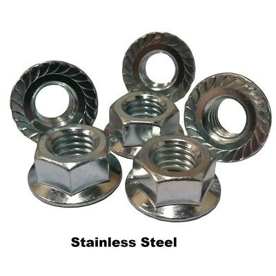 """Stainless Serrated Hex Flange Nuts 1/4""""-20  (Qty: 50)"""