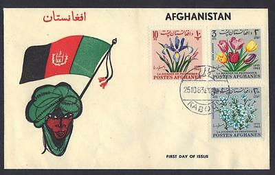 Afghanistan 1963 Illustrated Cachet Fdc Of Day Of The Professor Kaboul 25 10 63