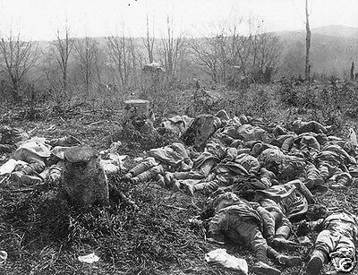 Large group of dead French soldiers on battlefield - 8x10 World War I Photo WWI