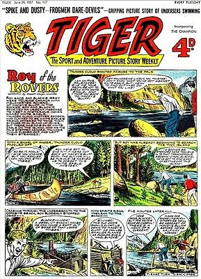 Uk Comics Tiger Collection On Dvd 250+ Comics And Annuals