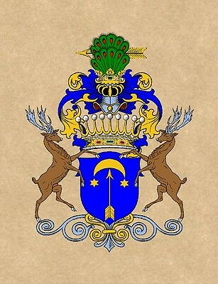 """8.5"""" X 11"""" COAT OF ARMS Print on Archival Parchment Paper - -family crest -"""