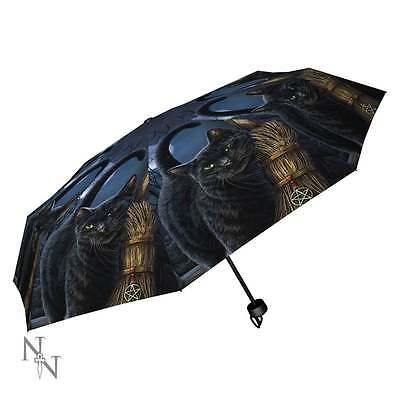 Gothic and Fantasy A Brush With Magick Umbrella