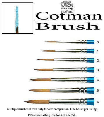 WINSOR & NEWTON Cotman Watercolor Brush #4 Elongated Round Short Handle 5302004
