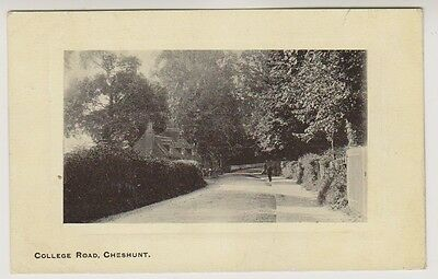 Hertfordshire postcard - College Road, Cheshunt - P/U