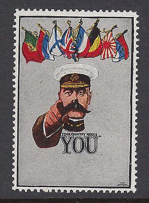 Your Country Needs You - Flags Of The Allies  - Wwi - Cinderella