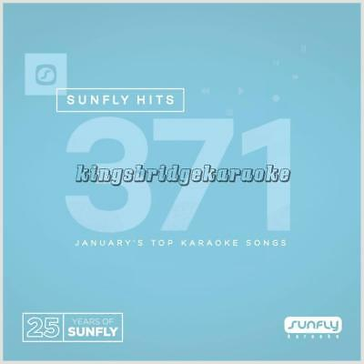 Sunfly Karaoke Hits 371 CDG 18 Chart Tracks Jan 2017 SF371 CD+G Disc Pop Hits