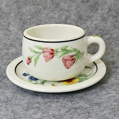 Cup Mug Saucer Southern Pacific Railroad  Prairie Mtn Wildflowers Syracuse China