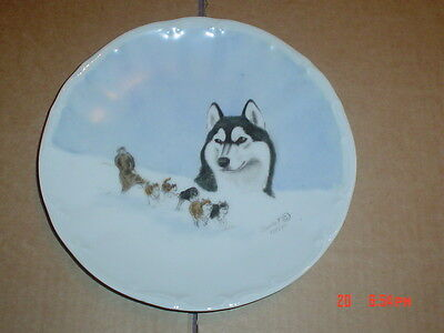 Lovely Barnhart Studios Hand Painted Limited Edition Collectors Plate Malamute