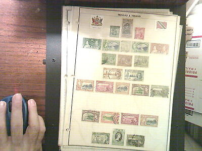 Solid Trinidad & Tobago Collection On Album Pages, Both Mint An Used