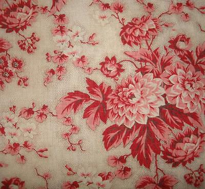 BEAUTIFUL FRAGMENT 19thc FRENCH CHINTZ c1850, CHRYSANTHEMUMS, PICOTAGE