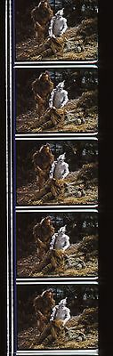 1939 The Wizard of Oz 35mm Film Cell strip very Rare wdd32
