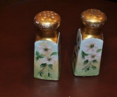 Antique Hand Painted Porcelain Salt and Pepper Shakers Artist Signed