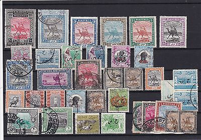 Africa , Camel Stamps , Mounted Mint And Used On Stock Card Ref 1083