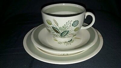 Vintage Woods Ware China Trio, Clovelly, 1950's.