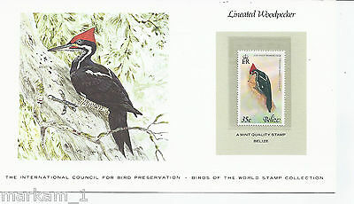 Lineated Woodpecker on Mint stamp from BELIZE