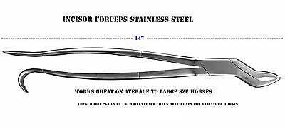14 inch Equine Dental Tooth Incisor Forceps Instruments Wolf Extracting 98468