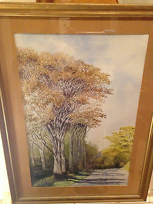 Large 24'' Watercolour Country Lane Framed Artwork - Signed 'A C Ritchie'