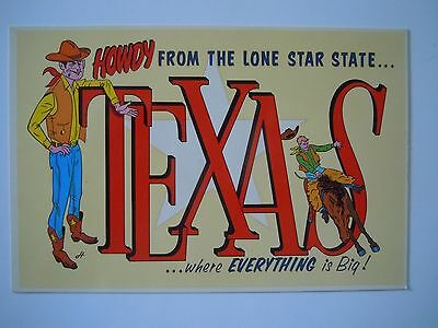 Howdy from the Lone Star State Texas .  Postcard Collectibles