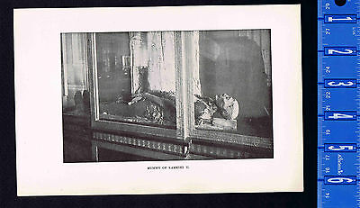 Mummy of  Pharaoh Rameses II on Display in Cairo - 1901 Vintage Historical Print