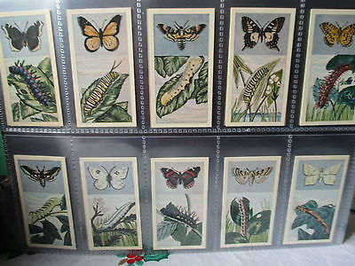 Lamberts**butterflies And Moths**set Of 25 Cards