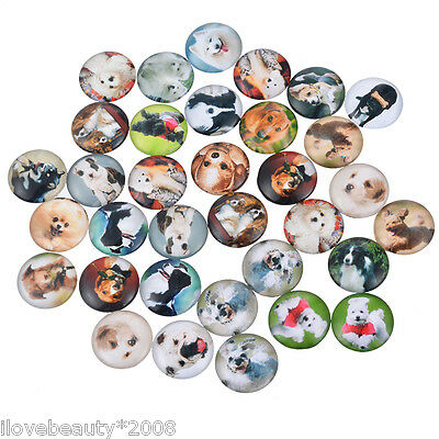 """10 Mixed Pet Dogs Glass Flatback Scrapbooking Dome Cabochons 12mm( 4/8"""")"""